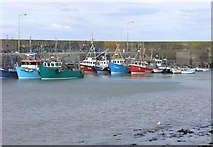 X3189 : Fishing boats in Helvick harbour by Hywel Williams