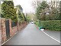 SE1228 : Bridle Dene - looking towards Bridle Stile by Betty Longbottom