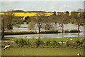 SK9800 : River Welland in flood by Richard Croft
