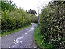 H3515 : Forest road near Aghavilla by Kenneth  Allen