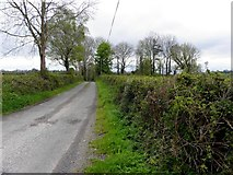 H3514 : Road at Feugh by Kenneth  Allen