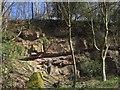 SE3062 : Quarry, Stainley Gill by Derek Harper