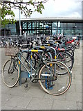 TQ3979 : Cycle Hire by Christine Westerback