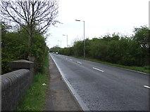 SK8939 : Great North Road (B1174) towards Grantham by JThomas