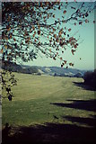 TQ1148 : North Downs Near Abinger Hammer by Colin Smith