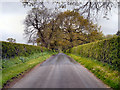 SJ7483 : New Road by David Dixon