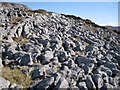 NG6221 : Limestone pavement on Bheinn Shuardail by Richard Dorrell