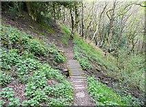 SE0421 : Bridge on Sowerby Bridge Footpath 136 by Humphrey Bolton