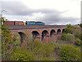 SD8110 : Roch Viaduct by David Dixon