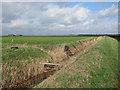 TL6690 : Ditch across Feltwell Anchor by Hugh Venables