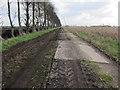 TL6589 : Corkway Drove by Hugh Venables