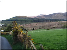 J3630 : Drinnahilly and Slievenamaddy Mountains from the slopes of  Curraghard by Eric Jones