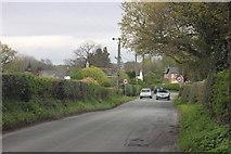 SJ9282 : Moggie Lane, Wardsend by Peter Turner