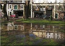 SX9164 : Puddle, Upton Park, Torquay by Derek Harper
