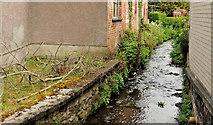 J4569 : Glen River, Comber by Albert Bridge