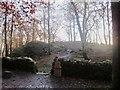 NY3802 : Jenkins Crag Viewpoint by Graham Robson