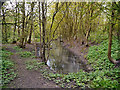 SD7403 : Blackleach Country Park by David Dixon