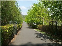 NS3882 : Path to Loch Lomond Shores by Lairich Rig