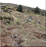 J3530 : Sheep on the slopes of Slievenabrock by Eric Jones