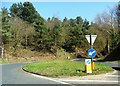 TM3499 : Traffic island west of Chedgrave by nick macneill