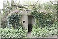 SU2598 : Entrance in the Ivy by Bill Nicholls