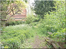 SK5319 : The Rectory Wildlife Garden - off Rectory Place by Betty Longbottom