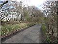 NZ0548 : View along the lane by Robert Graham