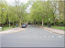 SK5319 : Steeple Row - Church Gate by Betty Longbottom