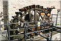 SO5271 : Waterwheel, Ashford Mill, Ashford Carbonell by Chris Allen