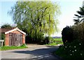 TG4202 : Weeping willow and garage, Reedham by nick macneill