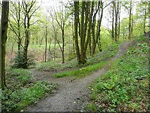 SE0421 : Link path from Sowerby Bridge Footpath 134 to the railway path, Norland by Humphrey Bolton