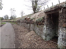 NT3267 : Former Line side Shelter on ex Waverley Railway Line by Dougie Elder