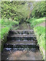 SP0083 : Weir on the Bourn Brook by Roy Hughes
