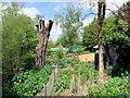 TM0733 : RSPB Flatford Wildlife Garden by PAUL FARMER