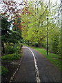 SK4833 : Path in West Park by David Lally
