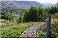 NG3900 : Nature Trail path junction by Jim Barton