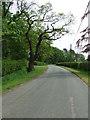 TL6959 : Minor Road by Keith Evans