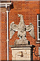 TQ2550 : Eagle, Reigate Priory by Ian Capper