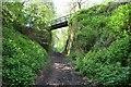 SK4116 : Swannington Incline by Ashley Dace