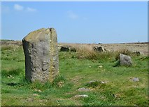 SK2775 : Barbrook I - Stone Circle on Big Moor by Neil Theasby