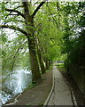 SN9584 : Riverside footpath, Llanidloes by Andrew Hill
