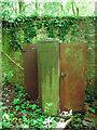 TM3094 : Rusty cupboard by Evelyn Simak