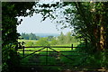 SU9438 : View From Church Lane, Witley, Surrey by Peter Trimming