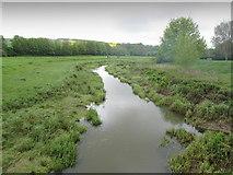 TQ5203 : Cuckmere River at Alfriston by Chris Heaton