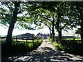 SK0250 : Entrance to Manor Farm by Christine Johnstone