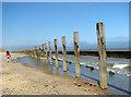 TG2938 : Walking the dog on Trimingham beach by Evelyn Simak