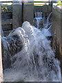 SJ4077 : Leaky Lock Gate by David Dixon