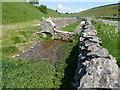 SK1476 : Sheep dip or watercress farm? by Graham Hogg