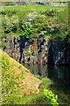 NY9839 : Greenfoot Quarry by Mick Garratt