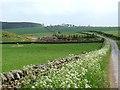 NZ0577 : The road to Walridge Moor by Oliver Dixon